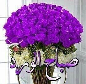 صباح البنفسج Hanukkah Wreath Flowers Hanukkah