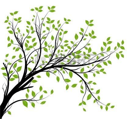 vecteur - silhouette branche décorative et feuilles vertes, sur fond