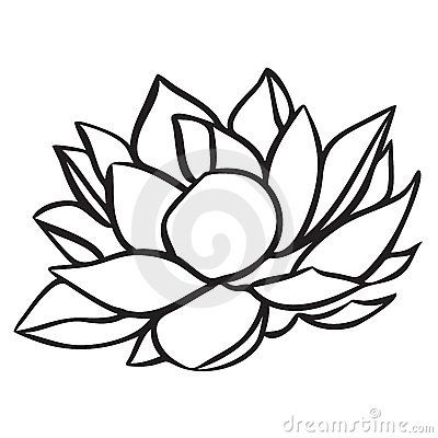 Lotus Stock Images Image 15264844 Lotus Flower Drawing Flower Drawing Design Lotus Flower Art