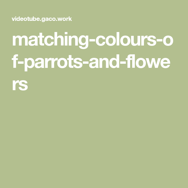 Best Matching Colours Of Parrots And Flowers Colours Color 400 x 300