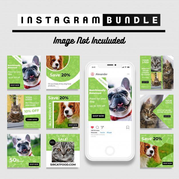 Modelo De Postagem Do Instagram Pet Shop Pet Shop Pet Branding Instagram Post Template
