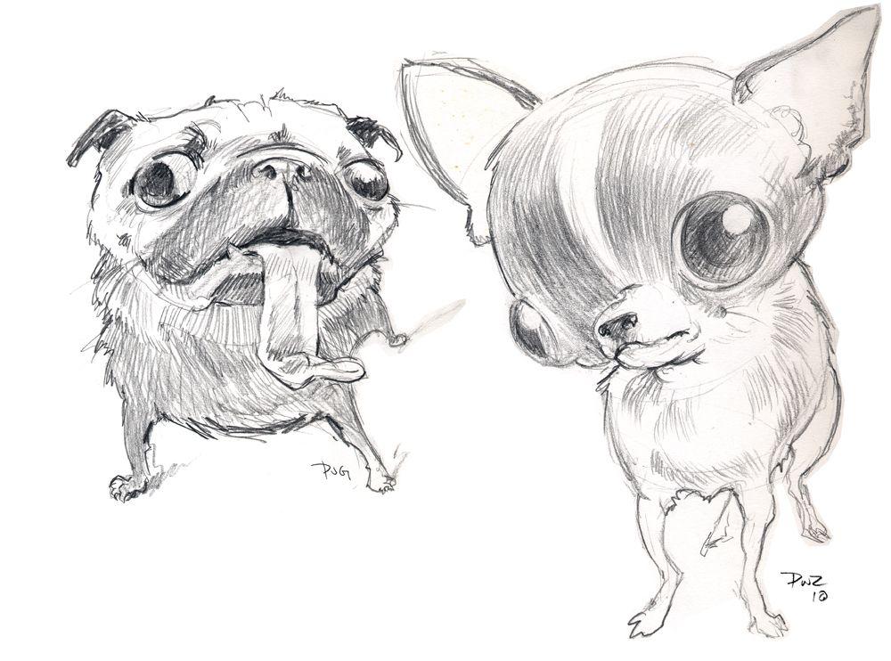 Dibujo De Chihuahua: Pug And Chihuahua Drawing