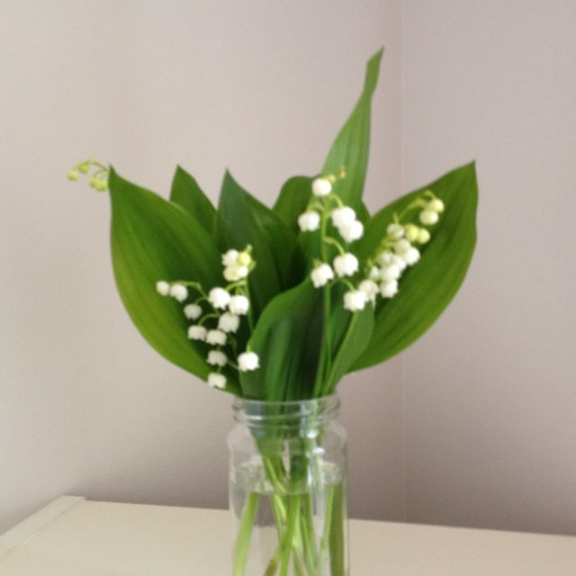 lily of the valley  simple and beautiful....  simply beautiful