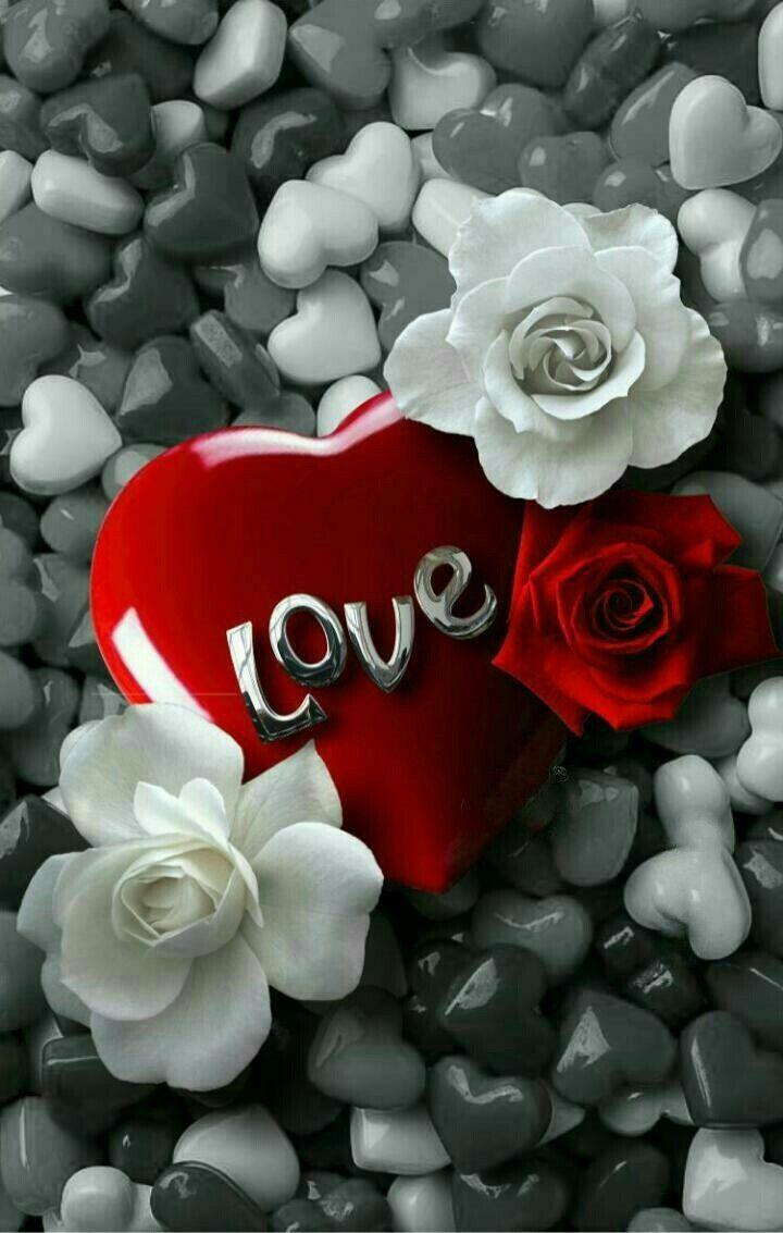 💘💙💐💙💐💙💘 | Εικόνες αγάπης, Τριαντάφυλλα, Ταπετσαρίες