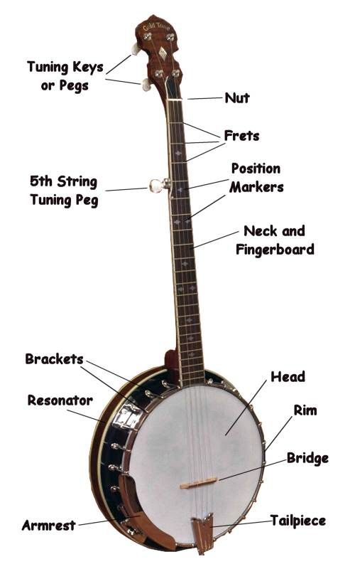 How To Draw A Banjo Please Help On Vintage Banjo Discussion Forums Banjo Hangout Banjo Cigar Box Guitar Music Instruments