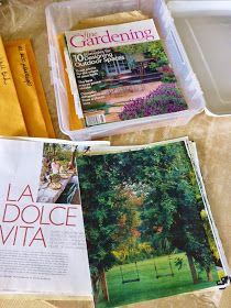 for the love of a house: garden notes and keepings