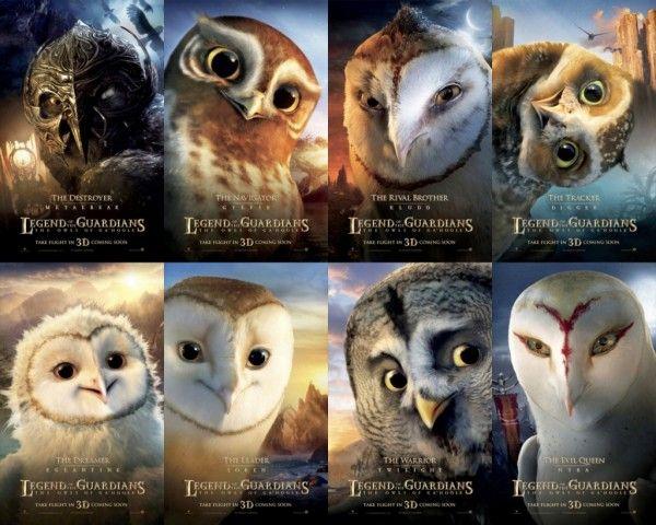 Pin On Animals Owls V