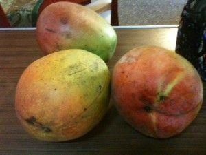 Summer Fruits | Cubapop