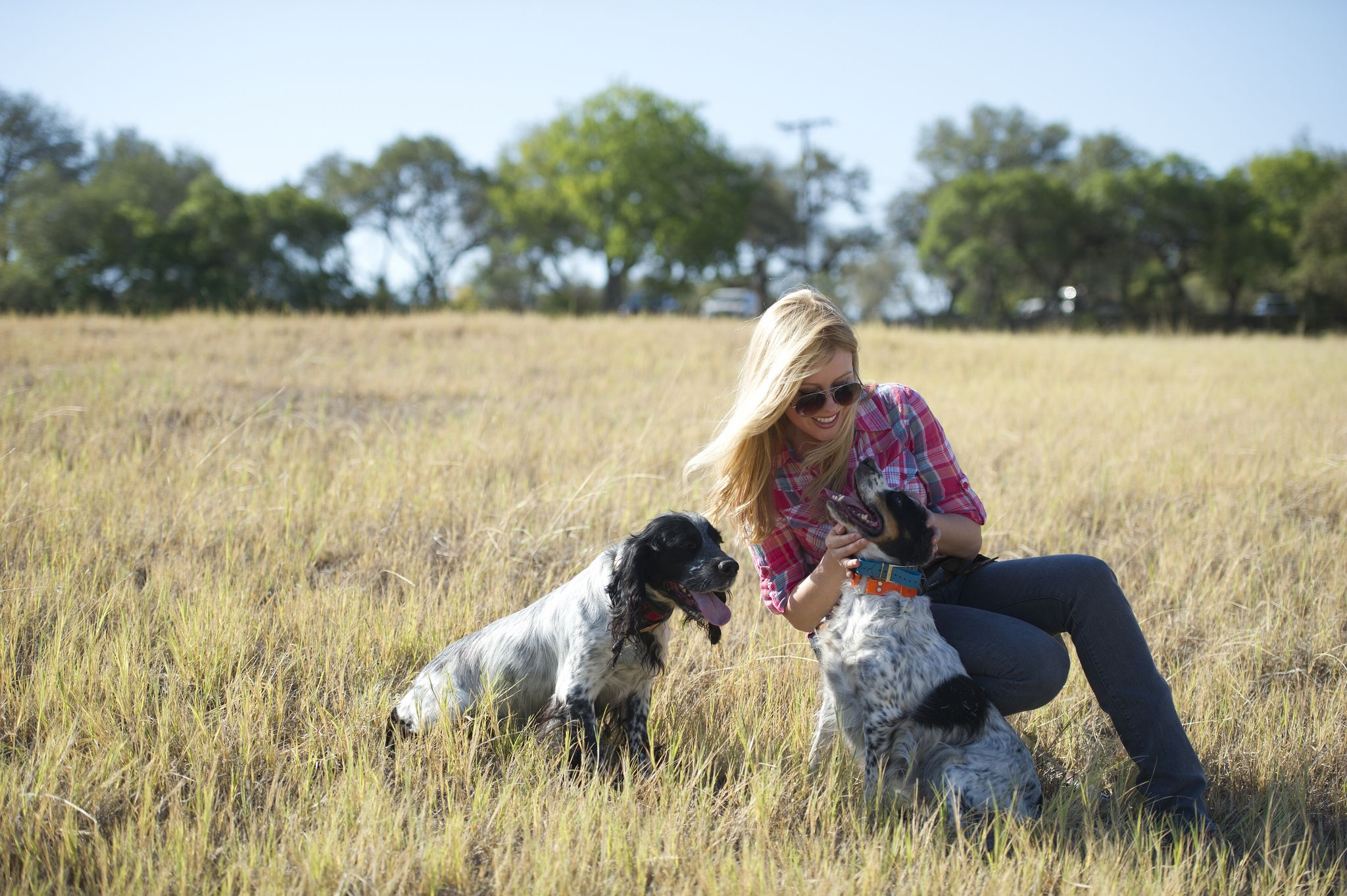 Georgia Pellegrini With Dogs Dogs Hunting Dogs Dog Games