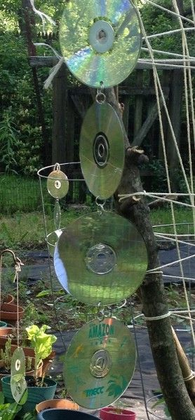 Reusing old CDs How to keep birds out of the garden Gardens