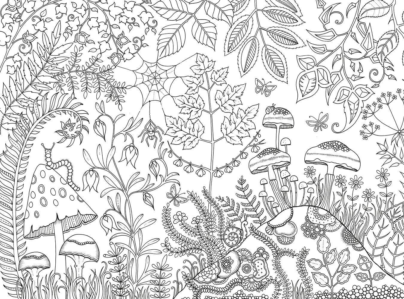 Johanna Basford Coloring Pages Fun Time A View In The Garden Gives You Priv Johanna Basford Coloring Basford Coloring Book Johanna Basford Coloring Book