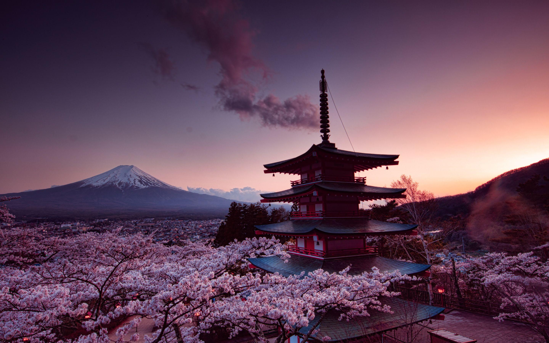 Jessica Bibby Mount Fuji World Wallpaper City Wallpaper