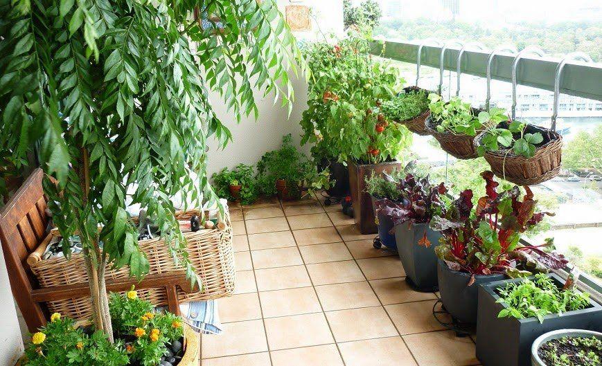 Resultado de imagen para jardines pequeños con macetas colgantes - maceteros para jardin
