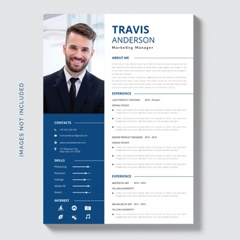 Download White Cv Template With Blue And Grey Details for