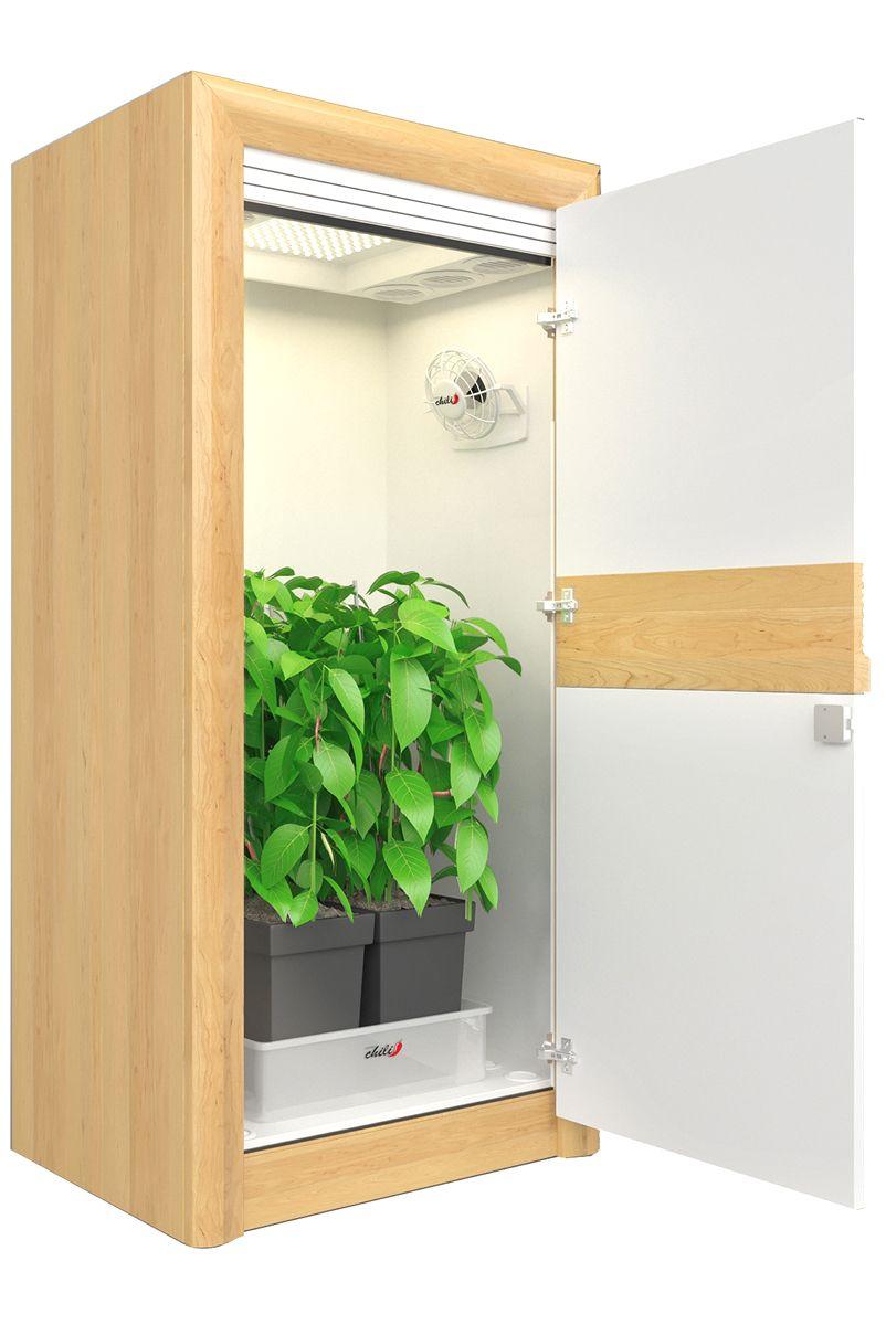 Led Growbox Komplettset Premium Growschrank Urban Chili Zimmerpflanzen Drinnen Led