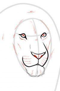 Auf folgende Seite finden Sie eine Anleitung für realistischen Löwe. Der Löwe…