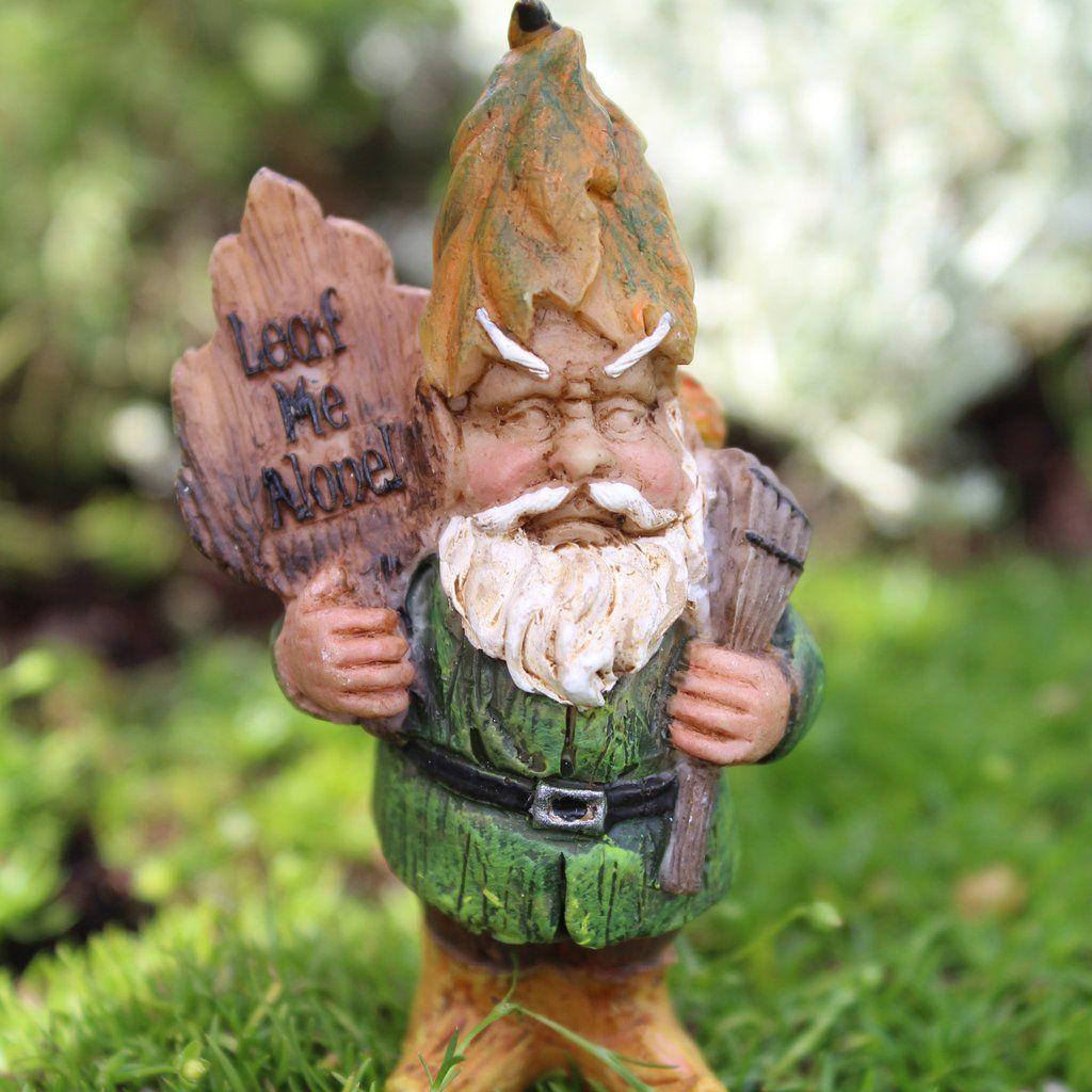 Andy The Gnome Mini Fairy Garden Miniature