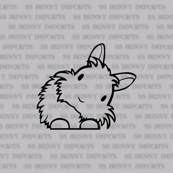 Peering Cute Head Tilt Lionhead Bunny Decal Rabbit Car