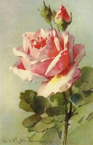 Épinglé par Maria de Lourdes Vieira sur Postales antiguas, Flores,  Etiquetas.. | Comment peindre des roses, Peinture fleurs, Image de rose