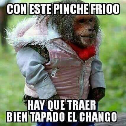 La Dory Funny Spanish Memes Memes Quotes Spanish Humor