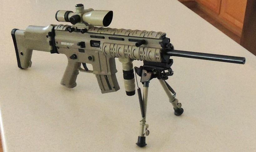 Anschutz MSR RX22 Desert  22LR |  22LR | Guns, Firearms, Weapons