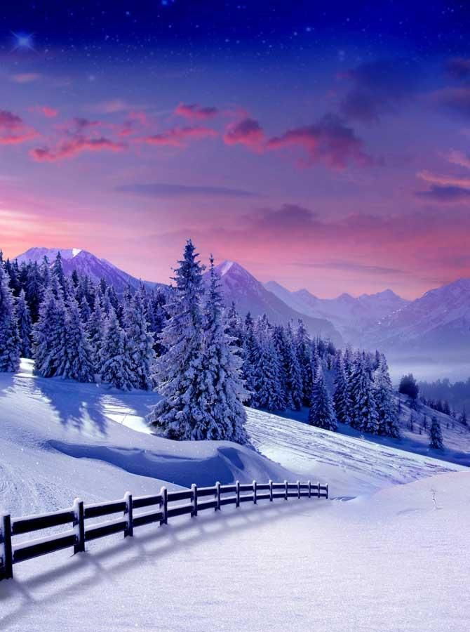 Christmas Trees Mountain Backdrops - 249 #scenery