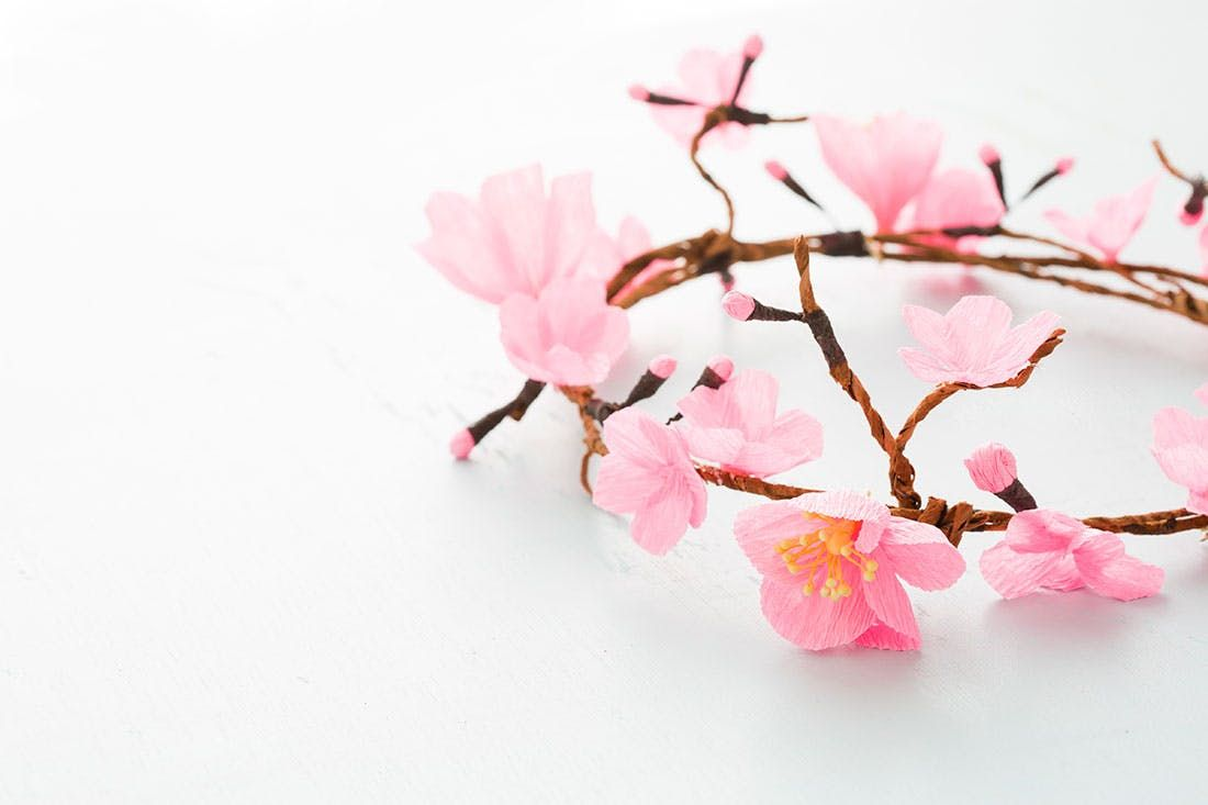 How To Make A Cherry Blossom Flower Crown Cherry Blossom Flowers Blossom Flower Cherry Blossom