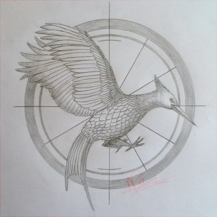Catching Fire Symbol Drawing