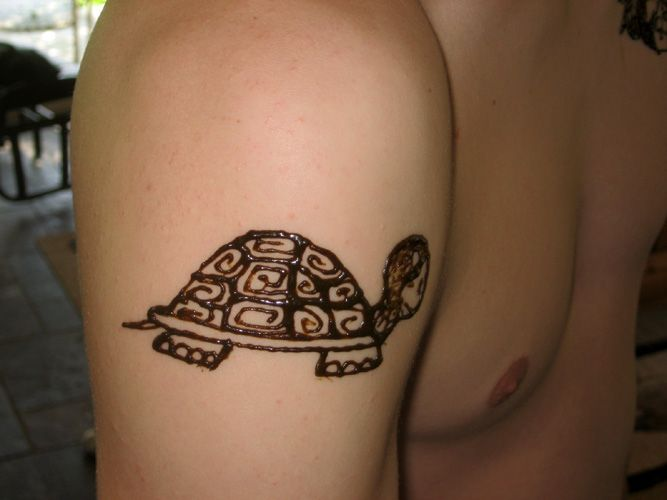 Image result for henna turtle