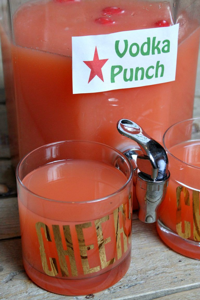 Vodka Party Punch - Recipe Girl