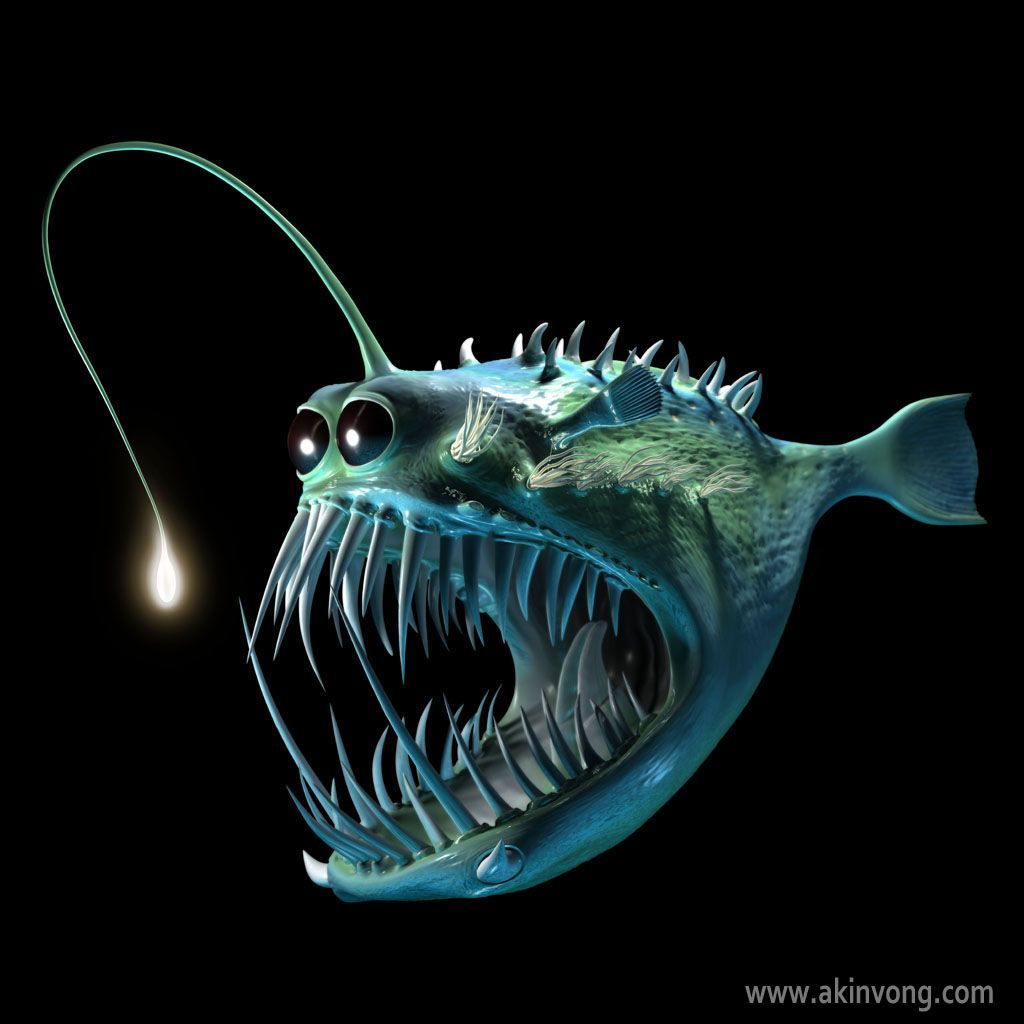 17 best images about angler fish on pinterest | deep sea creatures, Reel Combo
