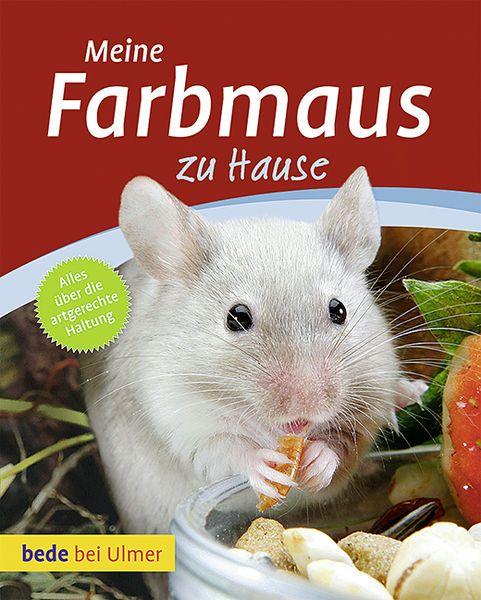 Spielzeug Hamster Fã R Kinder