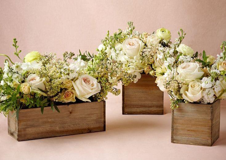 Vasos De Caixote Jpg 734 518 Pixels Com Imagens Flores Em Uma