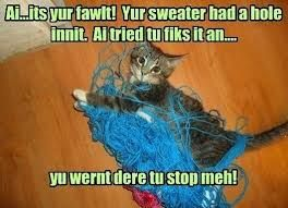 Risultati immagini per cats and babies funny memes