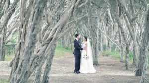 The day of wedding is the most important day of any one's life. It is the mixing of two souls in one body.
