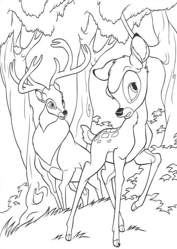 bambi ausmalbilder  malvorlage eule malvorlagen pferde