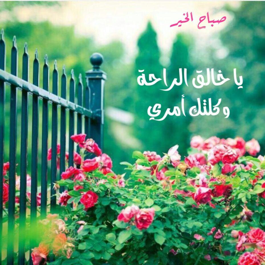 ما أجمل أن تقول في هذا الصباح يا خالق الراحة وكلتك أمري واستودعتك هم ي فبشرني بما يفتح Wallpaper Nature Flowers Beautiful Gardens Gardening For Beginners