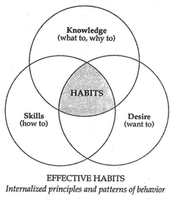 Keys To Success Series Seven Habits Highly Effective People 7