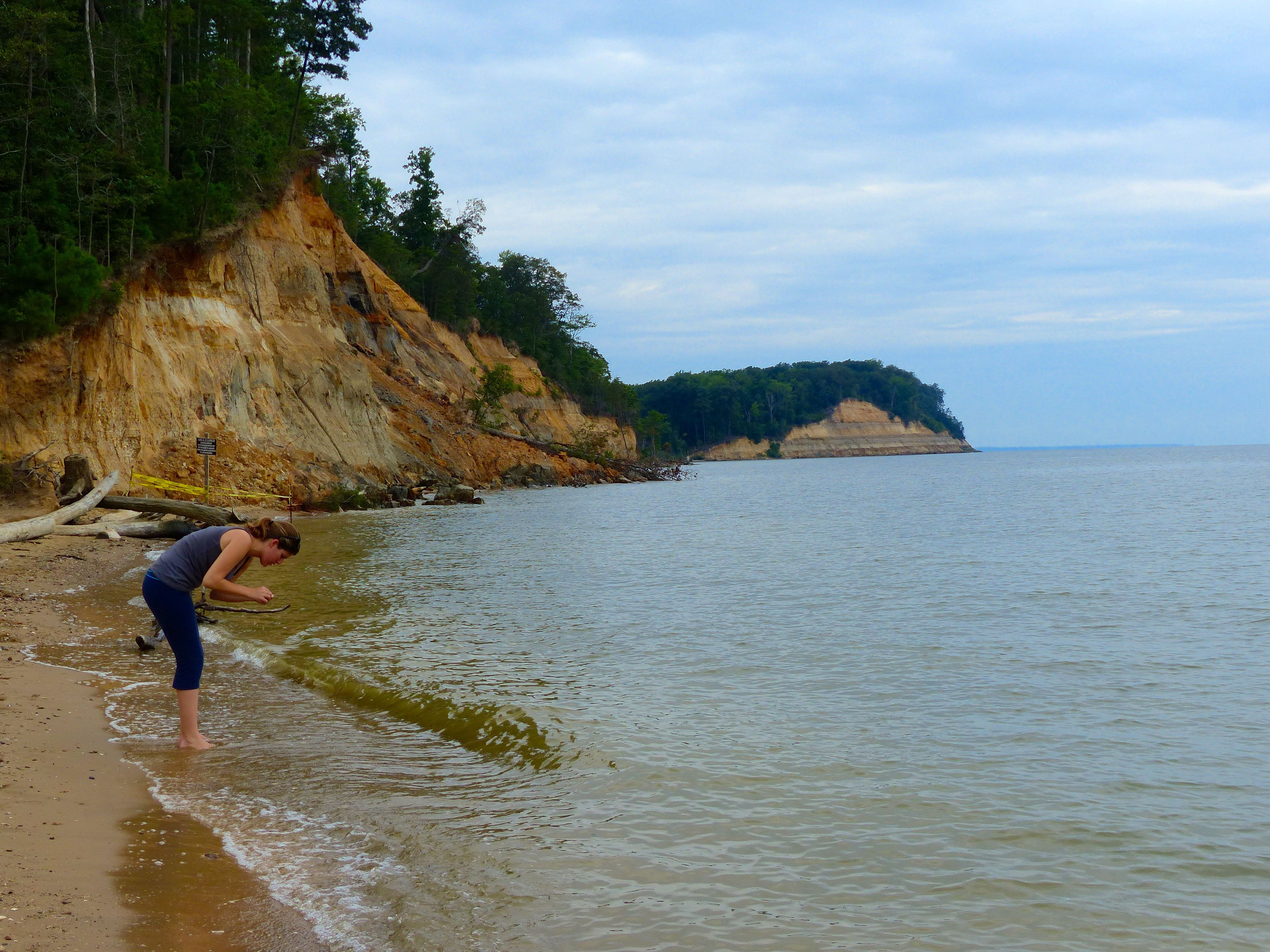 Fossil Hunting In Maryland Be A Paleontologist For A Day