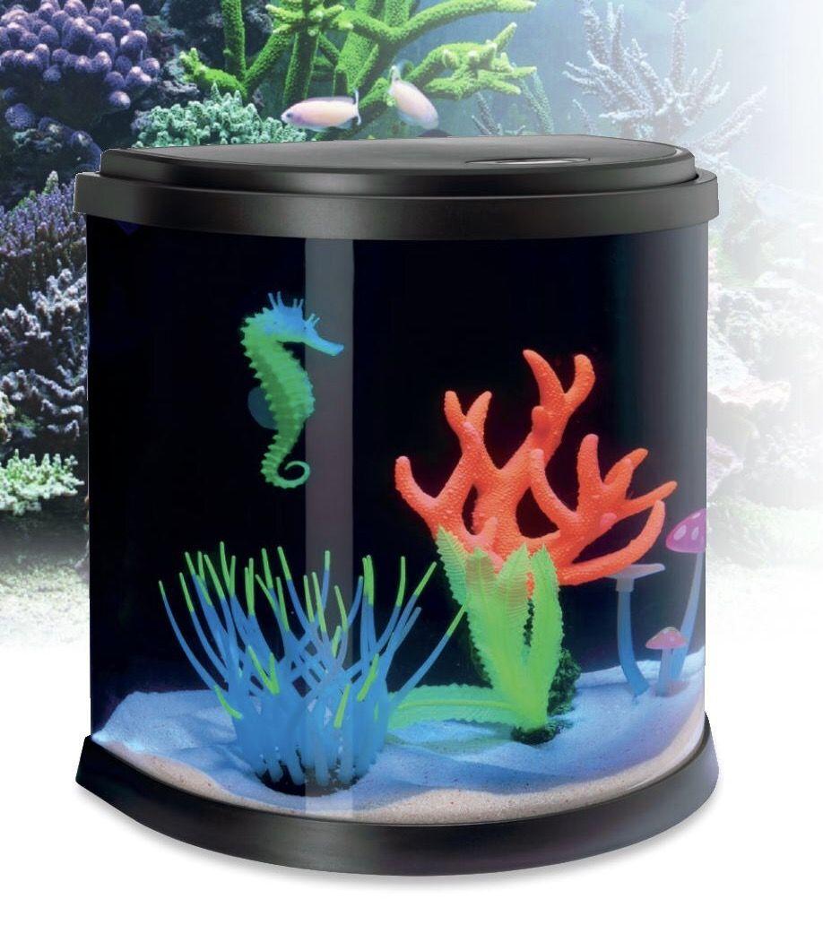 un aquarium fluo pour une touche deco sympa ! | un aquarium
