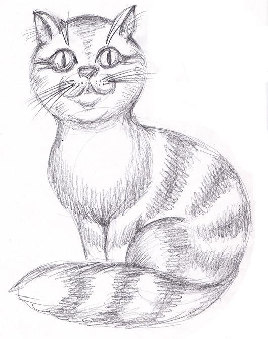 картинки кошки карандашом легко рисовать юге беринговым