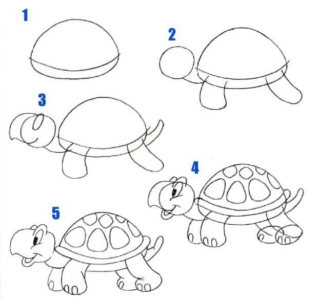 how to draw a turtle easy