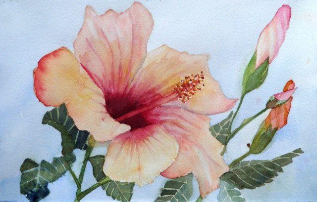 PEACH MELBA Original Watercolor Painting by missycowan on Etsy