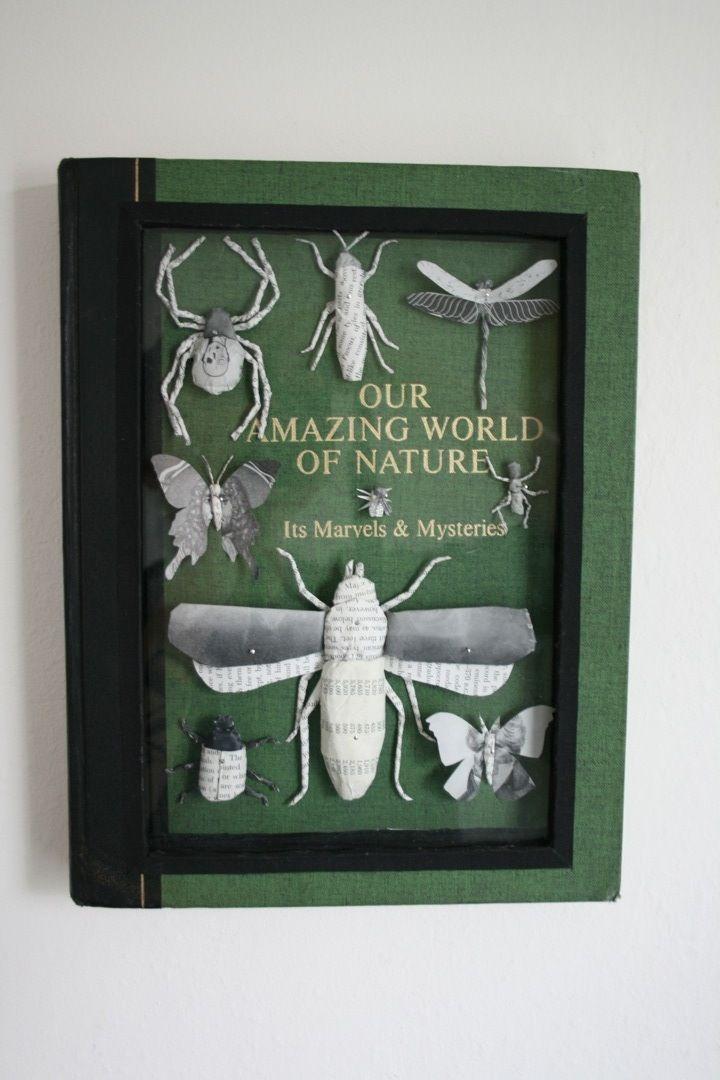 Bug Book Brad Reynolds Entomology Illustration Artist