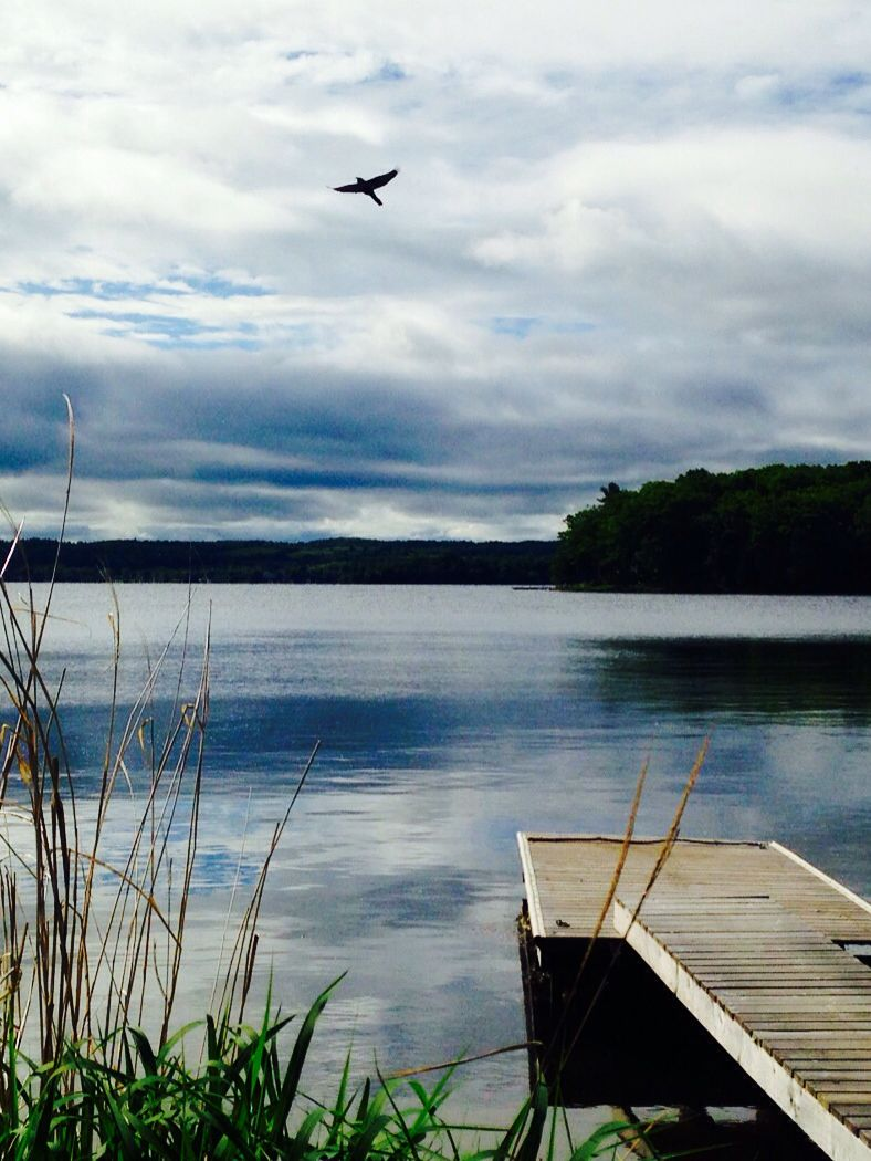 Overcast beauty #RiceLake - Elmhirst's Resort
