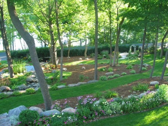 slope landscape ideas wooded