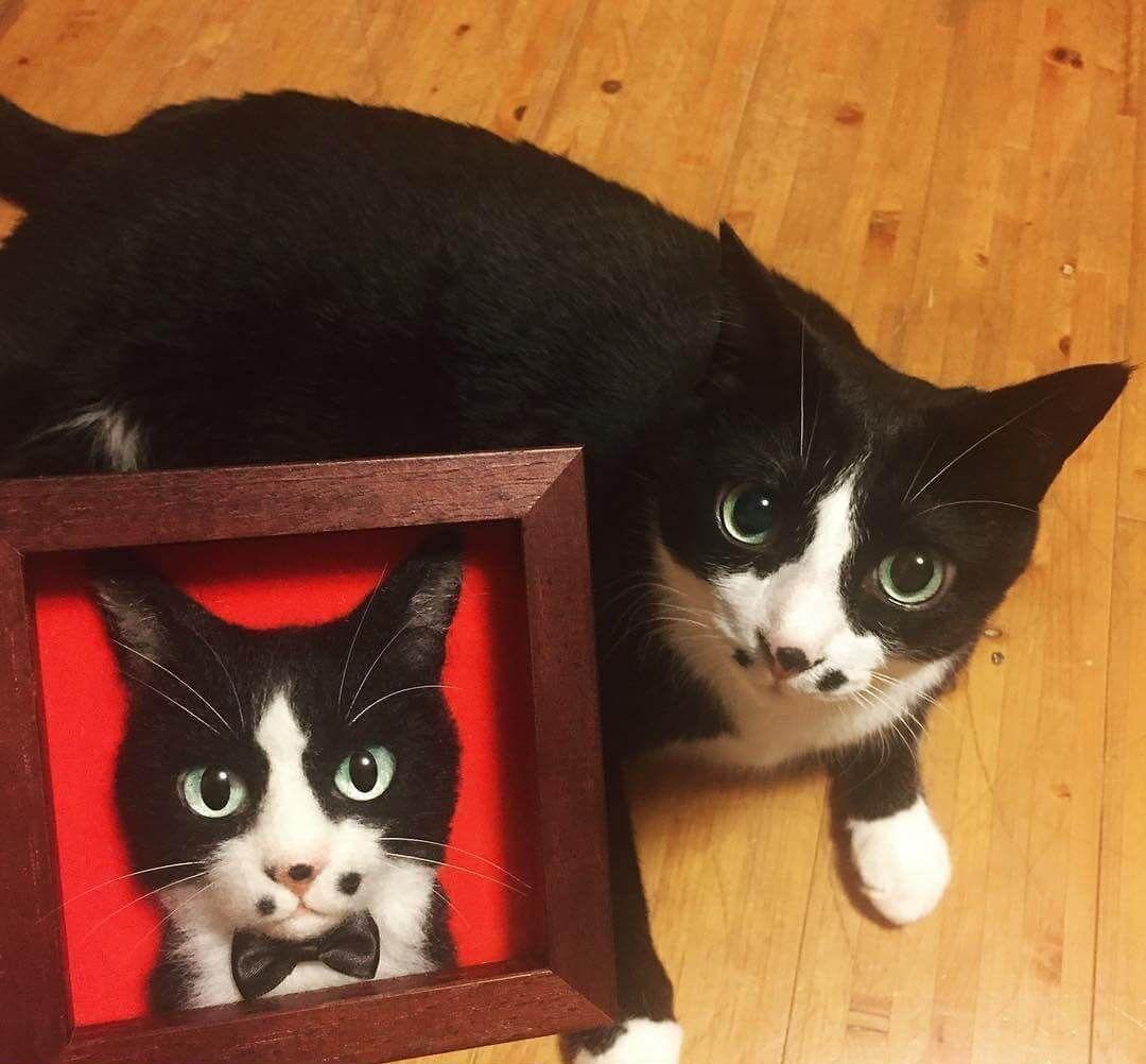 Wool Needle Felt Cat Portraits and Video Demonstration