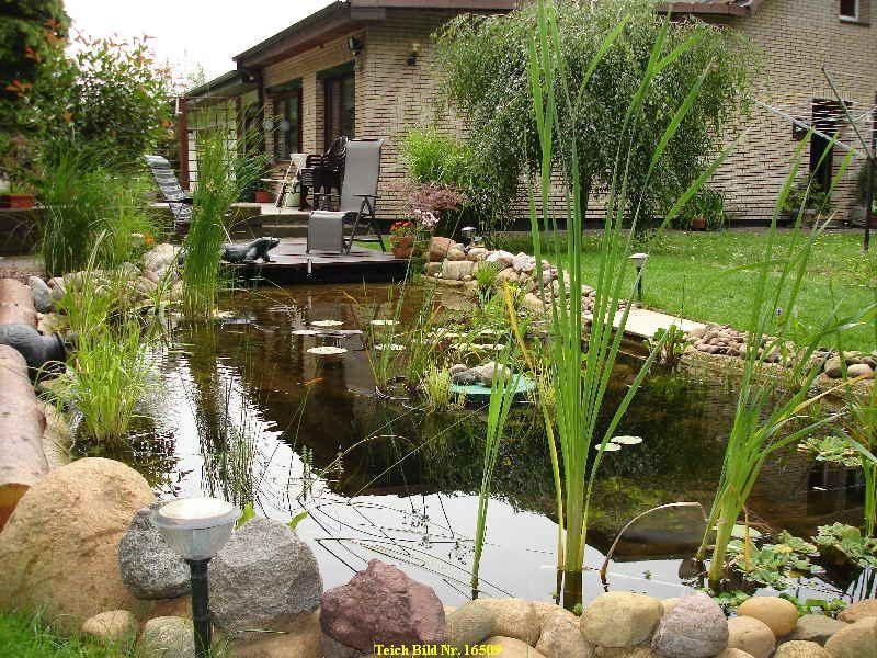 55 Gartenteich Bilder lassen Sie für Ihren Traumgarten inspirieren ...