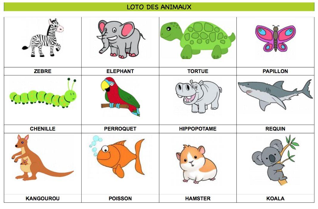 Loto des animaux imprimer 60 animaux au total partie 1 5 - Devine tete a imprimer ...