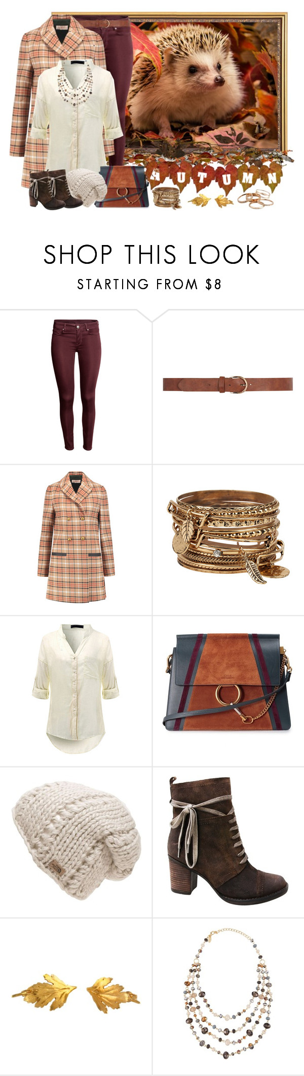 """Autumn Hedgehog"" by pink-quartz ❤ liked on Polyvore featuring Dorothy Perkins, Tory Burch, ALDO, Chloé, The North Face, Miz Mooz, Alex Monroe, Emily & Ashley and Kendra Scott"